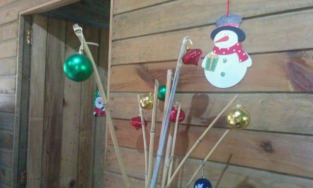 Feliz Navidad – Merry Christmas from Nicaragua