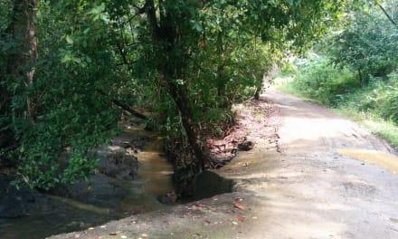 A Walk to Cobano