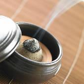 Moxibustion warming therapy