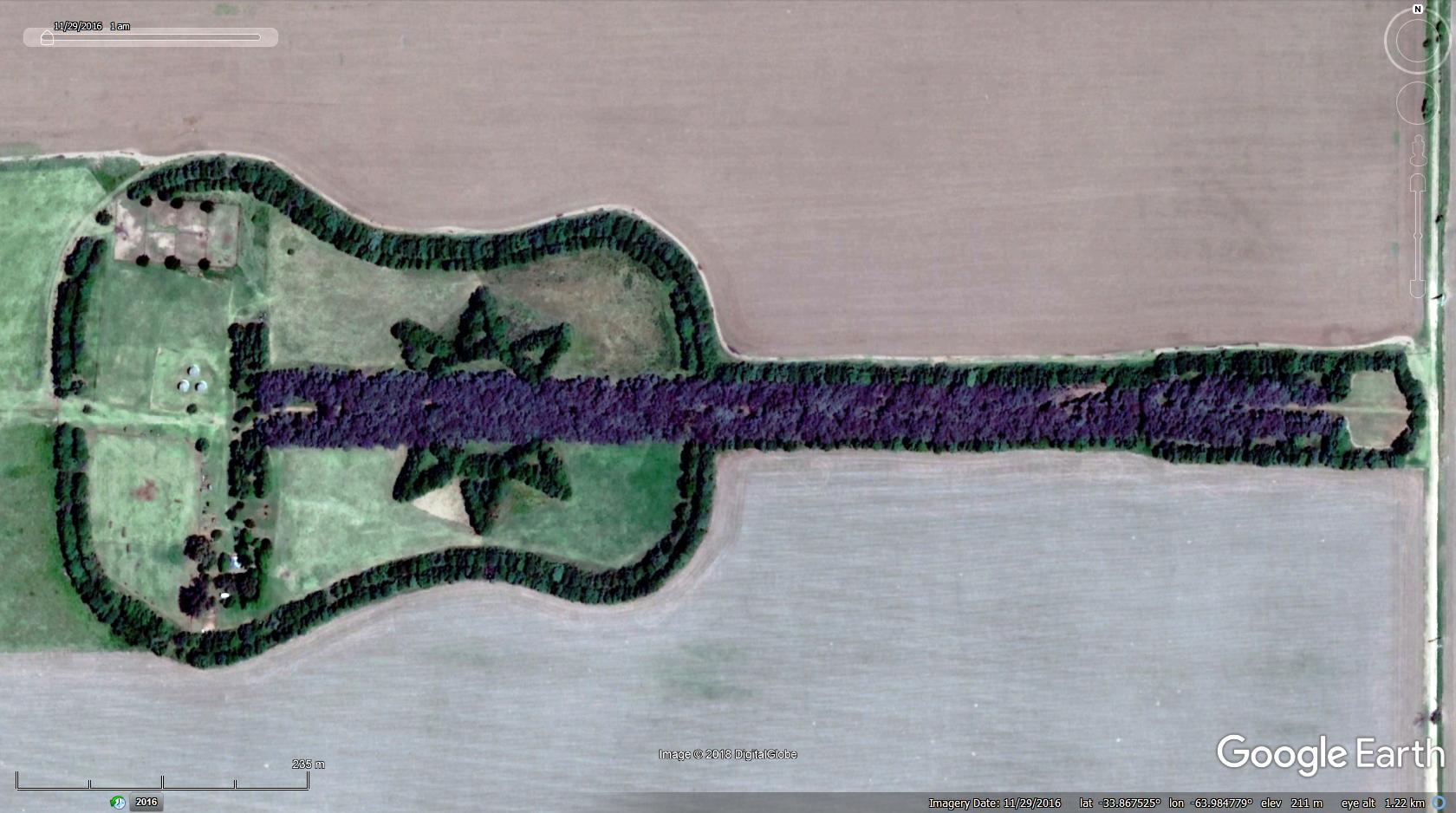 Man-Plants-Guitar-Shaped-Forest-in-Memory-of-His-Wife,pedro-martin-ureta, pedro-martin-ureta-google-maps, pedro-martin-ureta-tree-guitar, pedro-martin-ureta-forest-guitar, pedro-martin-ureta-guitar, pedro-martin-ureta-guitarra,