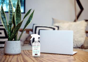 Nettoyant écran sur une table avec une plante et un PC portable