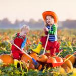 kids in pumpkin patch