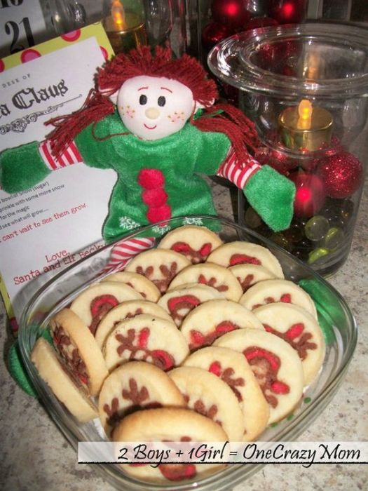 elf with cookies