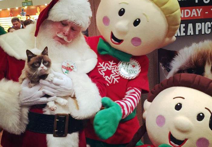 Santa holding Grumpy Cat