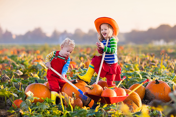 kids in pumpkin patch
