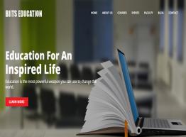 BIITS EDUCATION