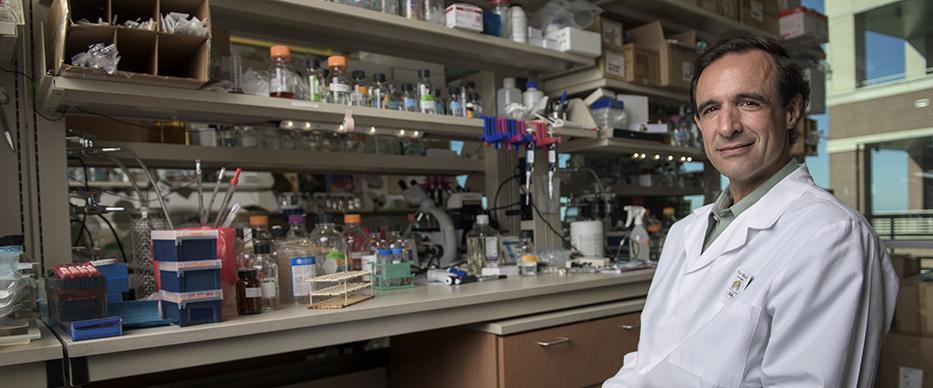 Dr. Jeffrey Cirillo