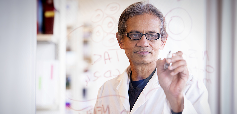 Dr. Rajesh Miranda