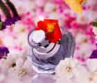 女性への贈り物にぴったり。ジル スチュアートのおすすめ香水5選