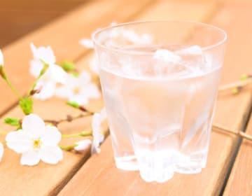 桜ロックグラス