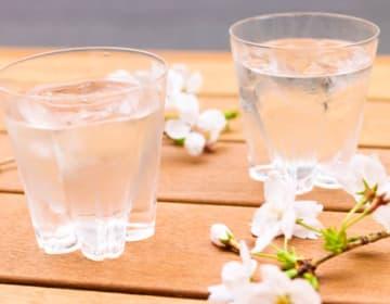 ペア桜ロックグラス
