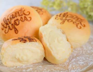 Thankyou クリームパン6個詰め合わせ