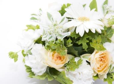 記念日やお祝いに!花のプレゼントを!