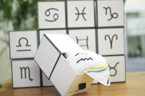【MR&MRS CHIEF】マイクロファイバー星座