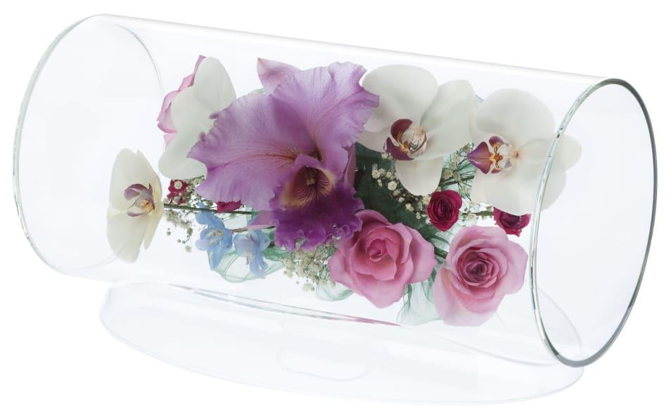 【Reine De Fleur】TB-N