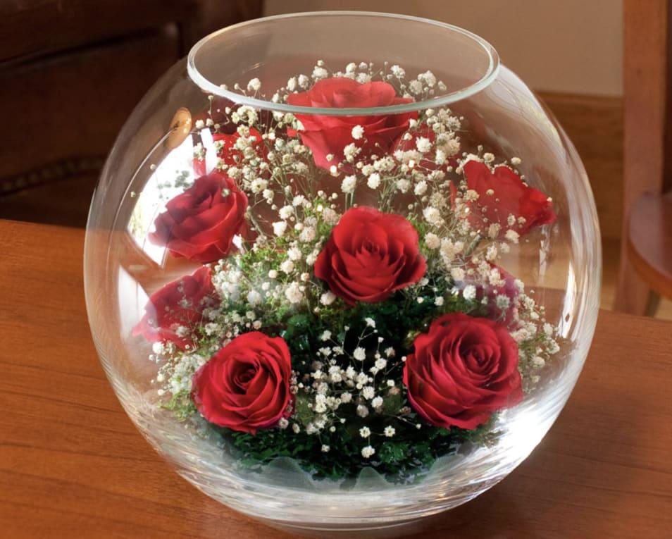 【Reine De Fleur】B-N