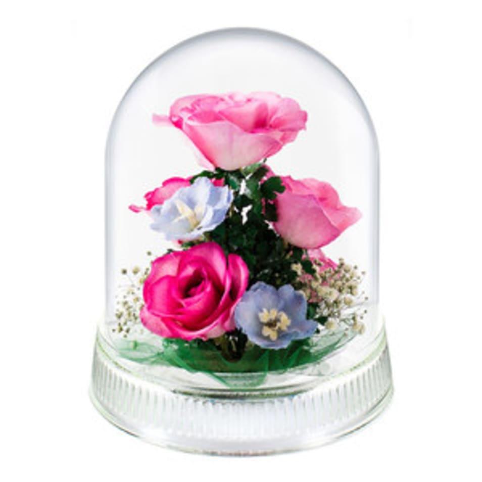 【Reine De Fleur】G-M
