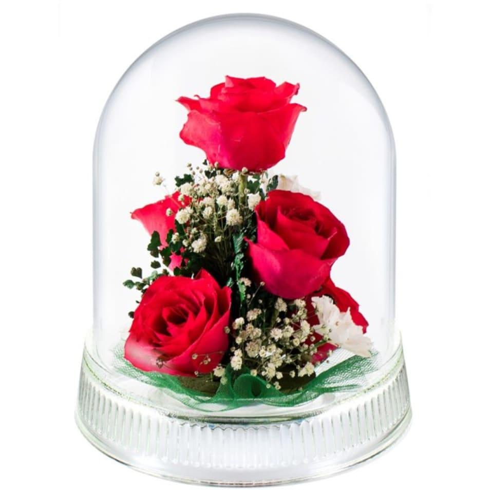 【Reine De Fleur】G-L