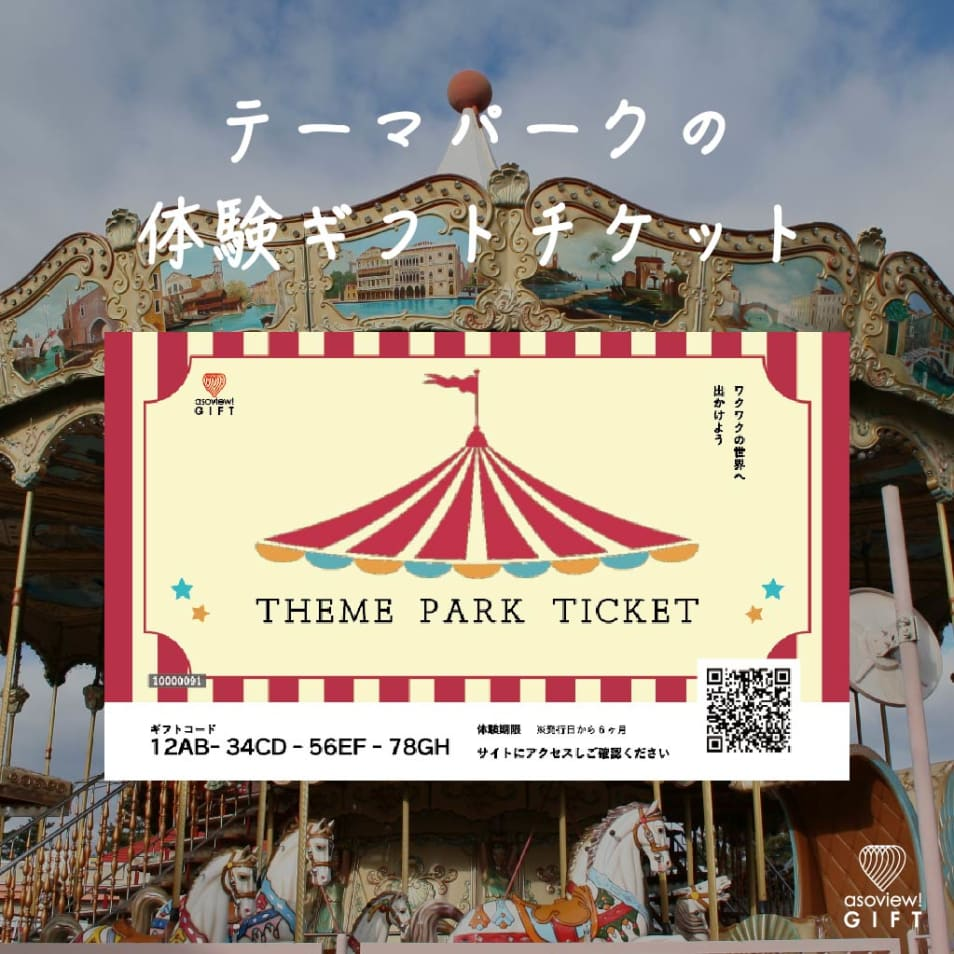 THEMEPARK TICKET