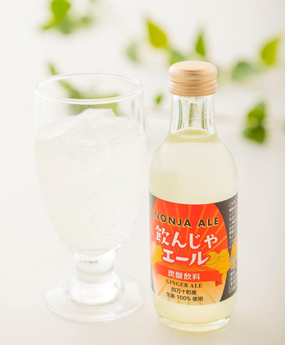飲んじゃエールセット(24本入)