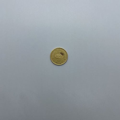 8gm Coin