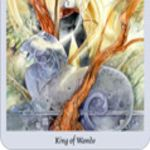shadowscapes-tarot-wands-king