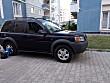 Land Rover Freelander - 3365405