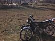 LIFAN DRAGON MOTORSIKLET 125LIK - 335908