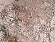 OPEL TİGRA FARKI HİSSET - 1275523
