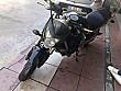 BOL EXTRALI Honda CB 600 F Hornet - 3238268
