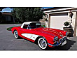 -GARAGE-1960 CHEVROLET CORVETTE STINGRAY Chevrolet Corvette Stingray Corvette Stingray - 2947429