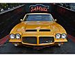 ŞAMNU  DAN 1971 PONTIAC GTO 400 Pontiac GTO GTO - 3857761