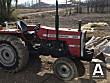 Traktör Massey Ferguson 265 temiz - 4193130