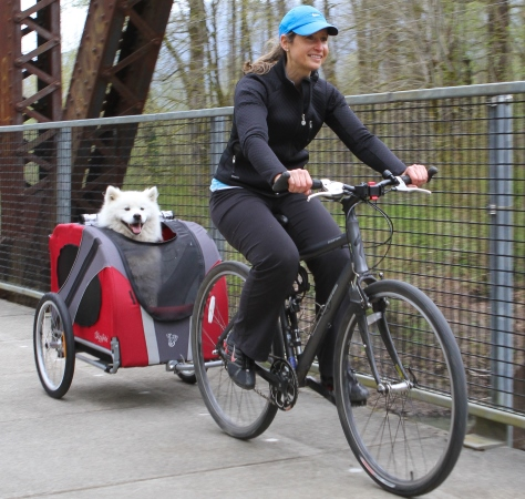 """""""Kargo bisikletler"""" çocukları, hayvanları, eşyaları taşımakta da kullanılıyor"""