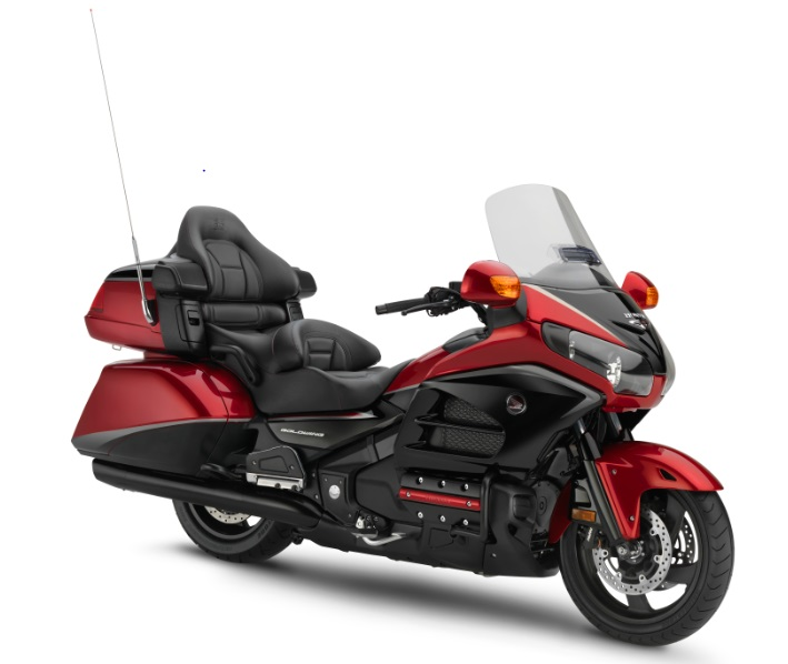 Anniversary Gold Wing