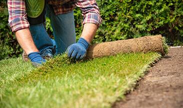 Landscaping Services Local Landscapers Taskrabbit