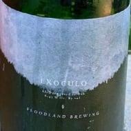 floodlandBrewing_exoculo(2020)