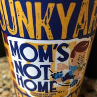 junkyardBrewingCompany_mom'sNotHome