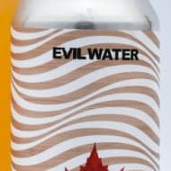 evilTwinBrewingNYC_evilWater-Maple