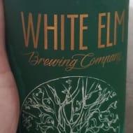 whiteElmBrewingCompany_spaceGrass