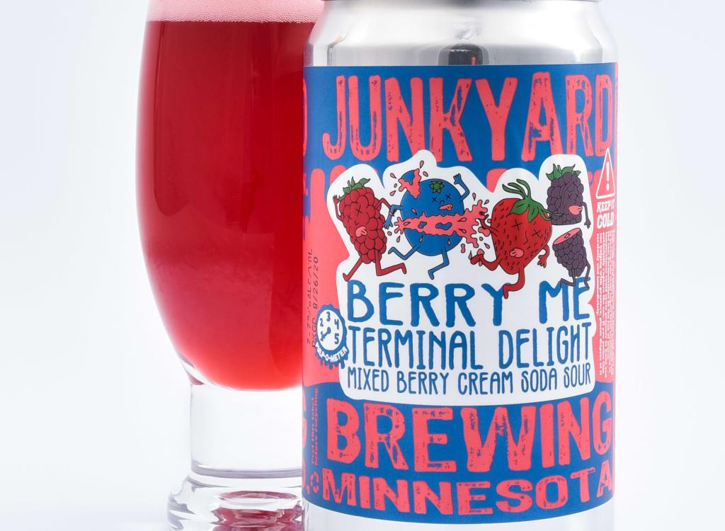 junkyardBrewingCompany_berryMeTerminalDelight