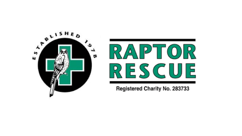 Deploying Business Central and Our Charity Accelerator for Raptor Rescue - Case Study