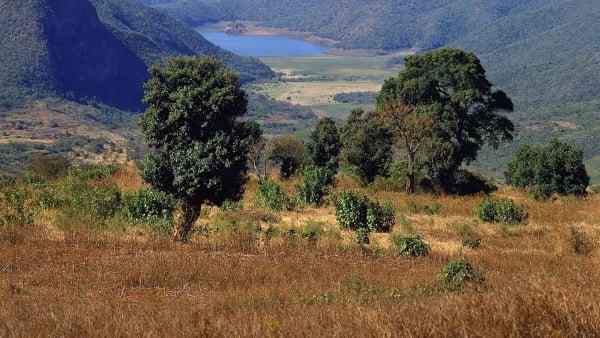 Limpopo landscape south africa 2417720935 o xofxht