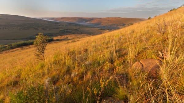 Highlands region oykeok