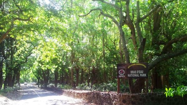 1 bras d eau national park   mauritius   entrance 1 umur8z