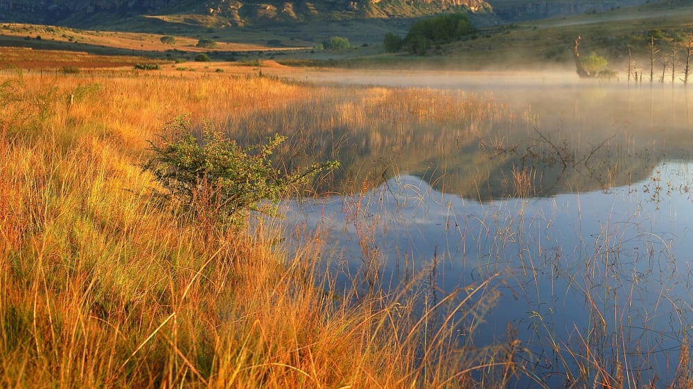 Dawn near fouriesburg   south africa 2417720807 o vp0ioe