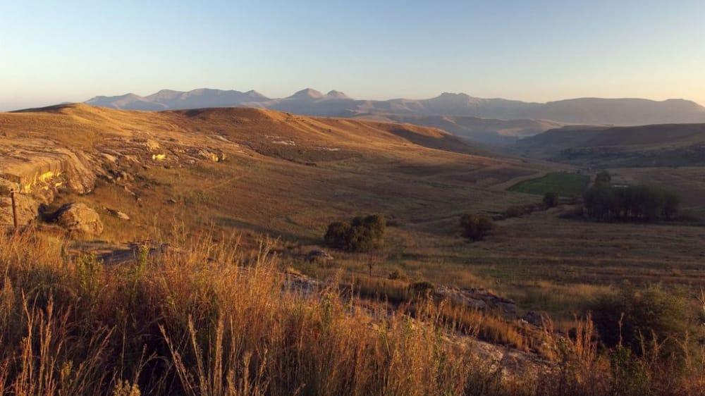 Late afternoon light free state  idxcok