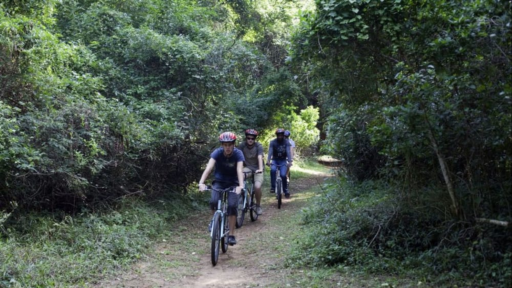 Mountain bike trail kwazulu natal 6252711467 o dksrub