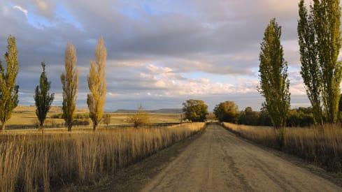 Maize farm1 djovt5