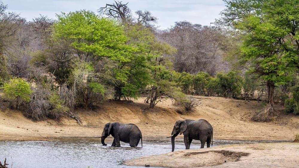 Mozambique7 vxuoxp